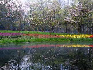 3月杭州第1个阳光灿烂的周末来了