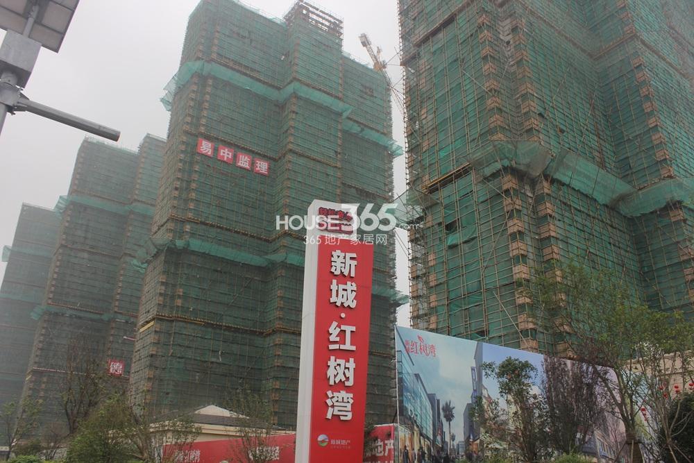 新城红树湾实景图2014.9.30