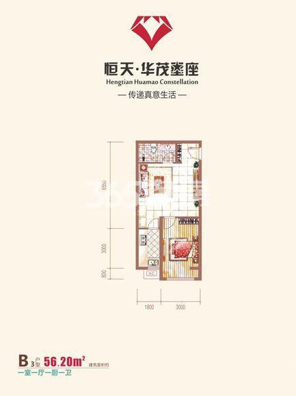 恒天华茂星座B3户型一室一厅一卫一厨56.20平米