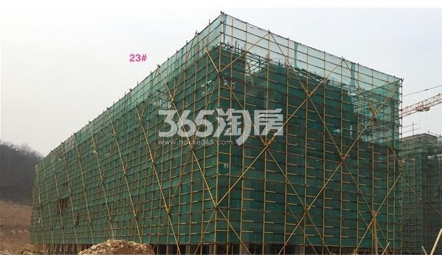 银亿东城12街区23号楼实景图(2.14)