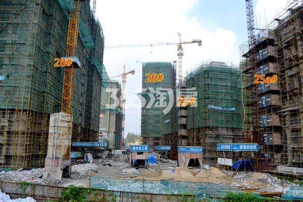 东方蓝海25#、25a#、26#、28#工程进度(2016年8月摄)