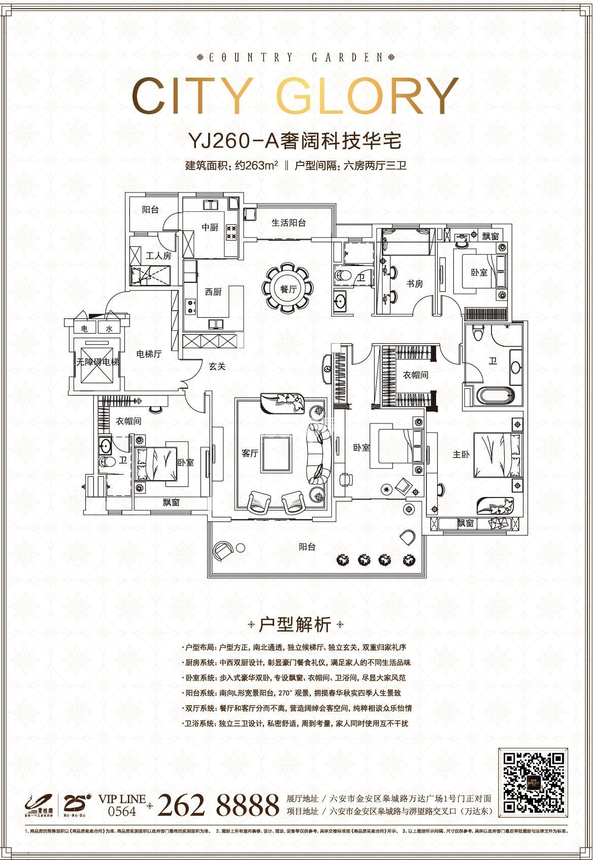 碧桂园·城市之光项目263平米户型图
