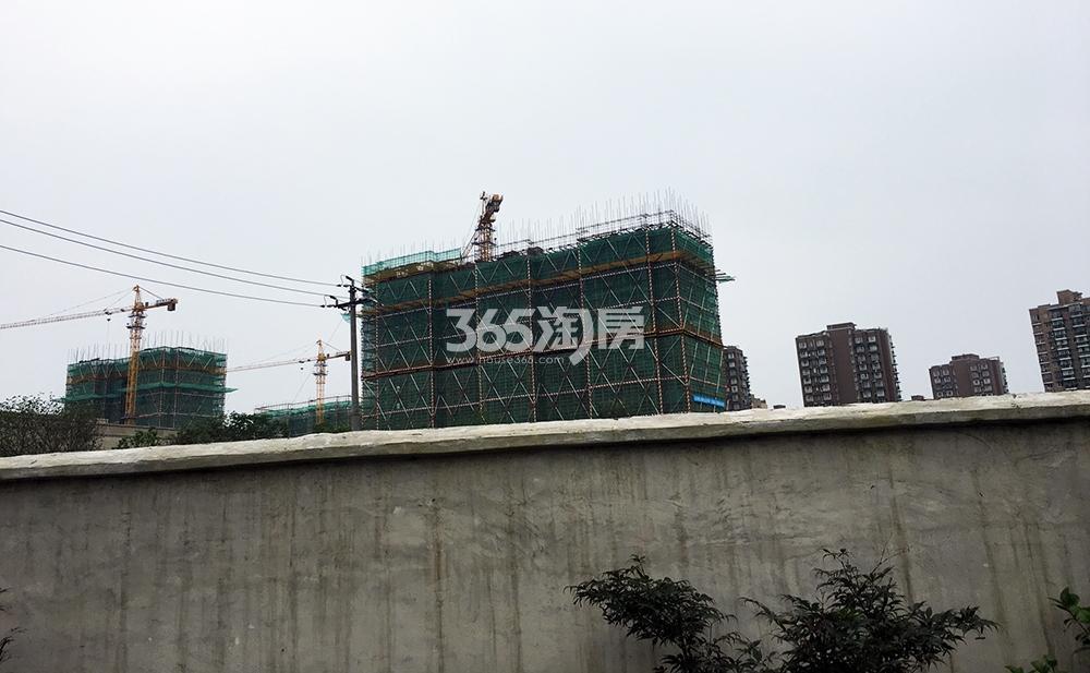 2017.6.25首开杭州金茂府局部实景