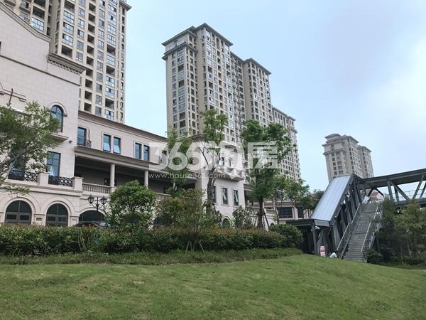 长泰国际社区小区绿化实景图(2017.6 摄)