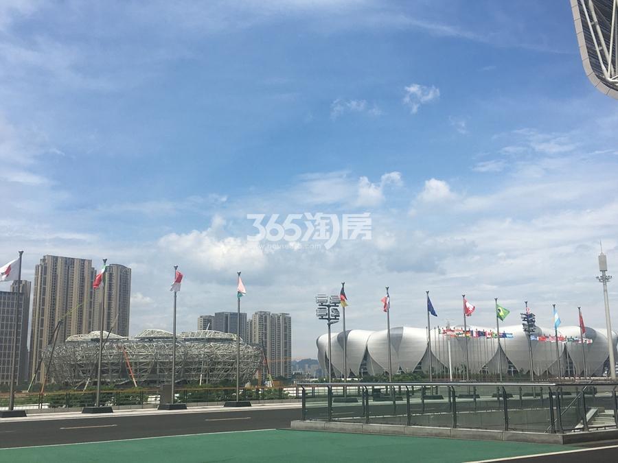 融信保利创世纪周边奥体博览中心主体育场实景图 2017.7