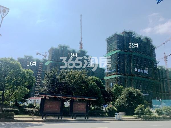西溪碧桂园一期高层工程实景(2017.9)
